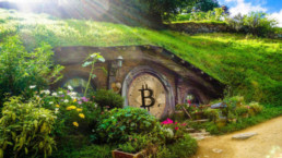 Bitcoin exchange NZ New Zealand hobit hole image