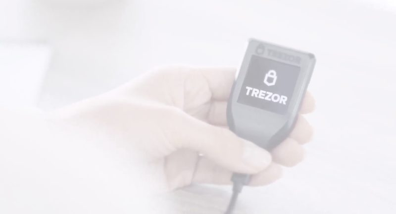 Treozr wallet in womans hand with fadfed white back ground